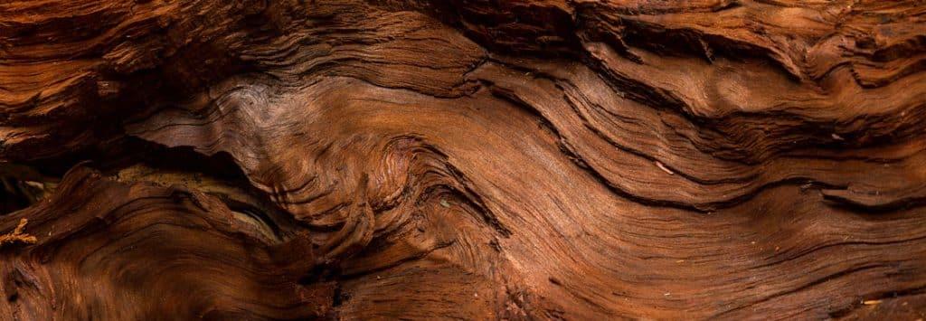 مشخصات طرفداران ادکلن با رایحه چوب